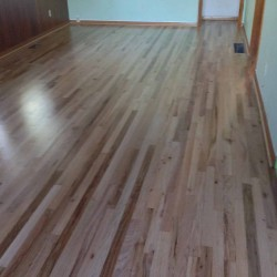 Wood Floor Restoration | Stelzer Painting PDX